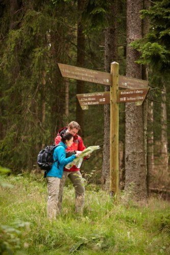 Blick in die Karte. | © Harzer Tourismusverband, M. Gloger
