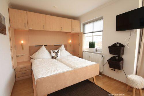 Wohn- /Schlafbereich mit offener Küche – Apartment am Hasselkopflift