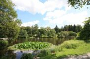 Gondelteich in Braunlage im Kurpark